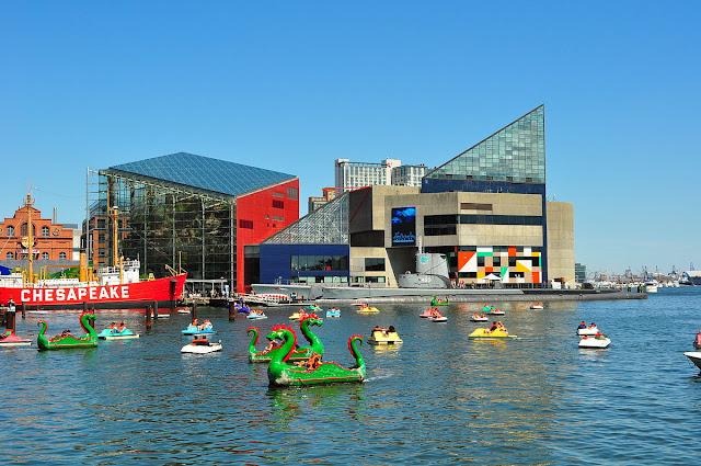 Best Aquariums in the USA: National Aquariums