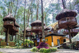 Kopeng treetop wisata adventure semarang