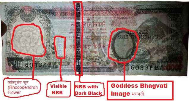 real or fake money