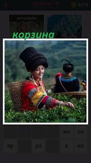 в поле девушка с корзиной собирает урожай