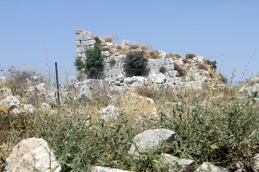 Bethel Israel: Bethel