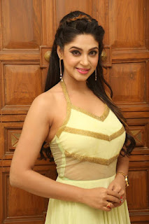 Actress Angana Roy Latest Pohtos in Long Dress at Sri Sri Movie Audio Launch 0001