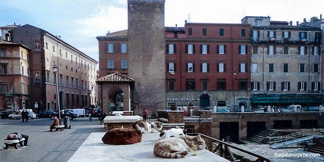 Largo de Torre Argentina, Roma