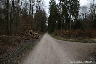 Langer Weg zum Haase See
