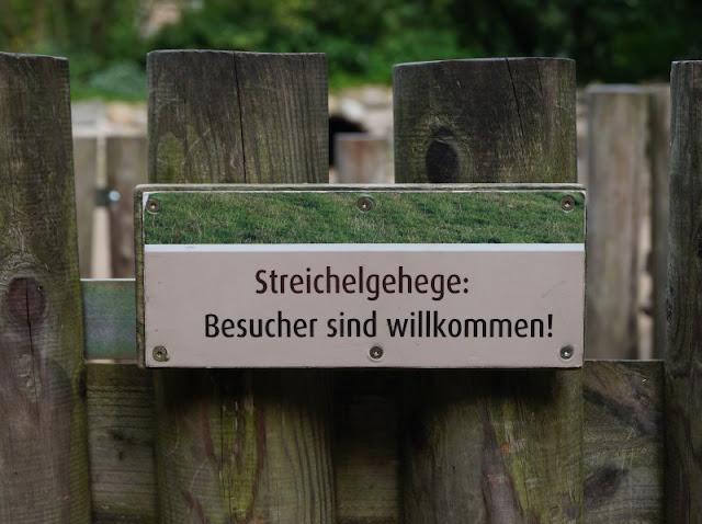Naturgenuss pur: Der Tierpark Arche Warder. Der Streichelzoo ist voll entspannter Tiere.