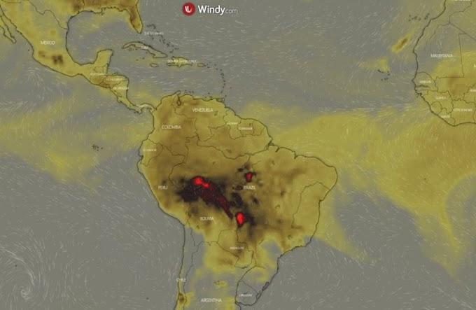 Esta estatística incorreta sobre a Amazônia é repetida sem parar