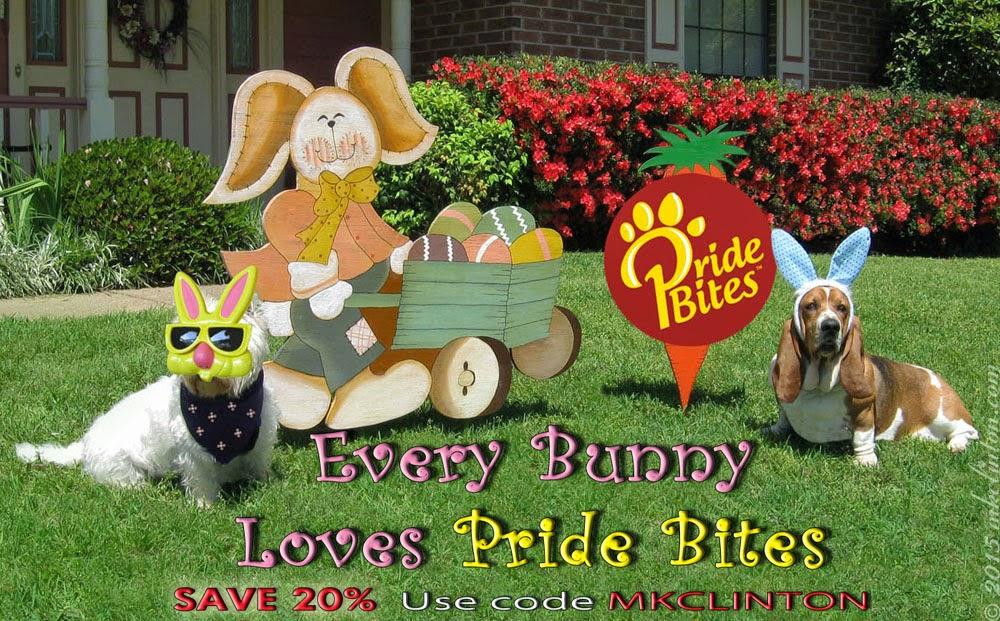 Every Bunny Loves Pride Bites