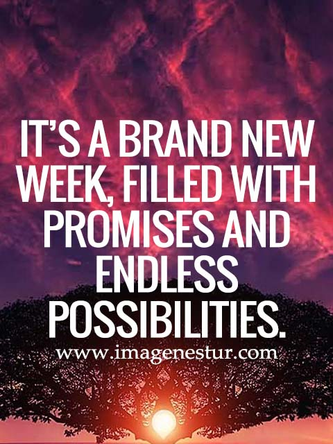 It's a brand new week, filled with promises and endless possibilities.