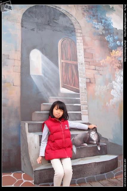 2017-03-25彰化員林-南區運動公園-蜀葵花+婚紗藝廊免費攝影場地