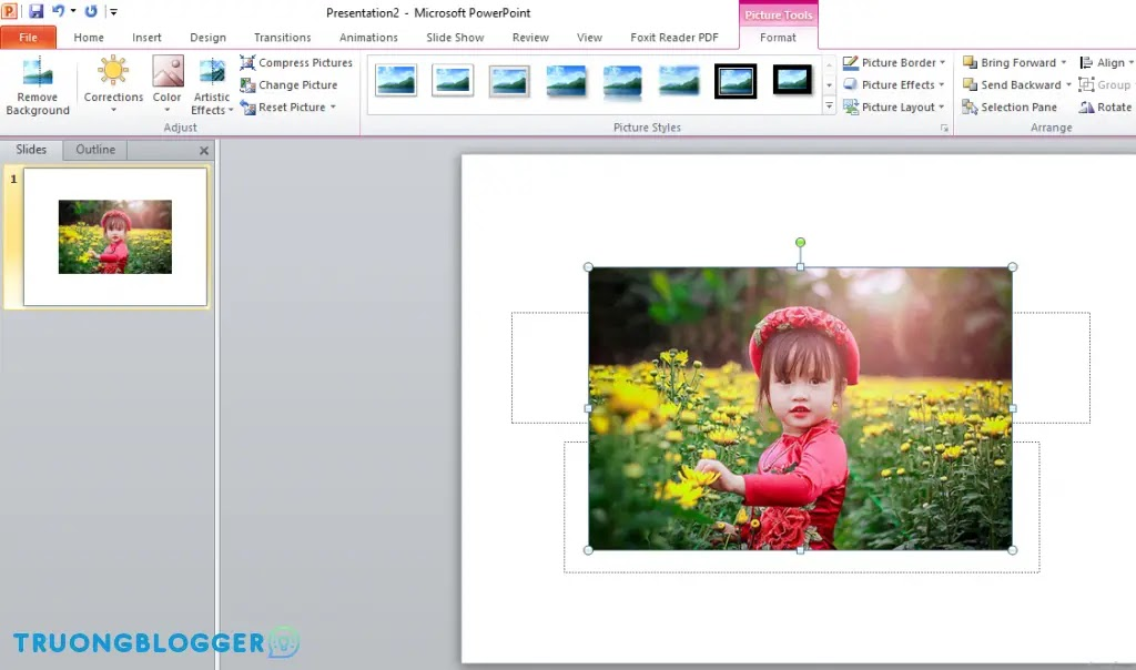Cách loại bỏ ảnh nền trong PowerPoint