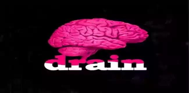 Write essay on Problem of Brain Drain in India