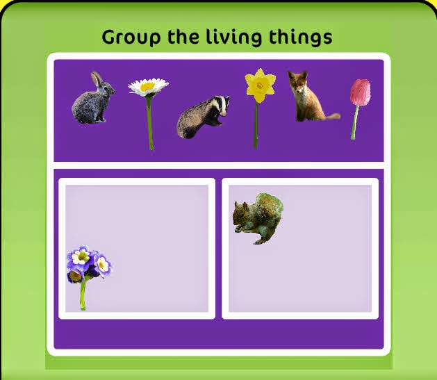 http://www.askaboutireland.ie/learning-zone/primary-students/infants/science/living-things/group-the-living-things/?utm_source=tiching&utm_medium=referral