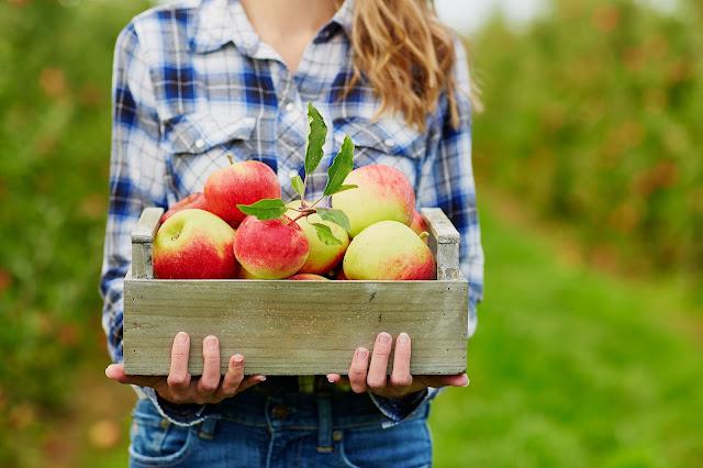 Cuka Epal – Rahsia Wanita Besi
