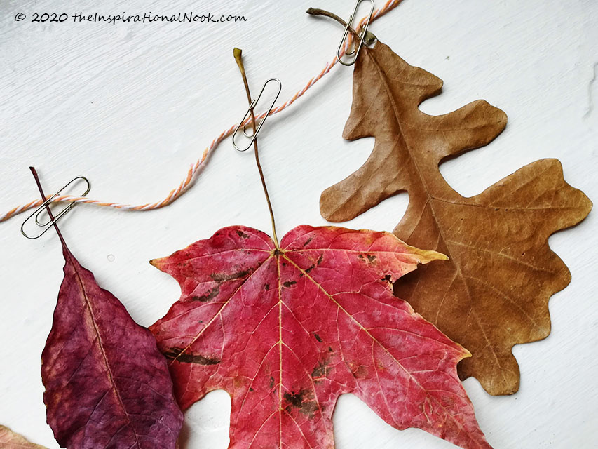 Autumn leaf bunting, Real dried leaves, twine and paperclip Fall garland