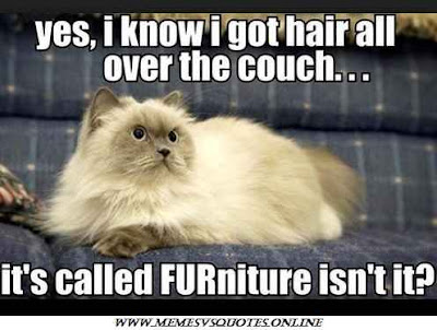 Called furniture