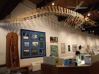 Interior of the Pratt Museum showing an animal skeleton suspended from the ceiling.