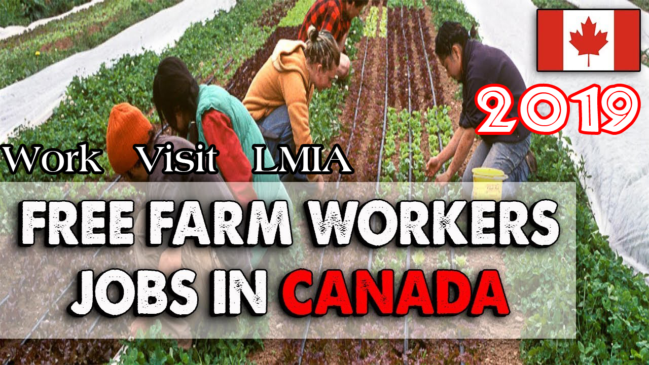 Agriculture Jobs in Canada- Farm Workers | TEEK RC