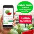 Keuntungan Berbelanja Makanan Secara Online