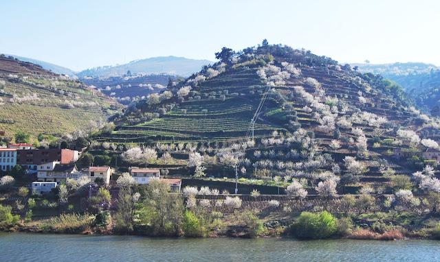 Valle Duero en el norte de Portugal