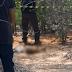 Corpo de criança é encontrado em mata de Petrolina