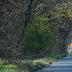 Dombi Tibor lefutotta a maratoni távot