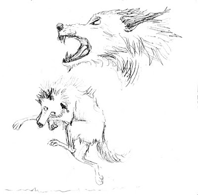 croquis illustration wolf loup faché fou