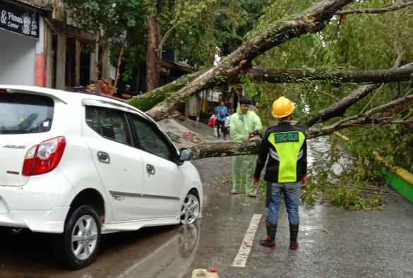 Hujan Disertai Angin Robohkan Pohon Dan Menimpa Kantor Dinas Lingkungan Hidup Kab Luwu Utara