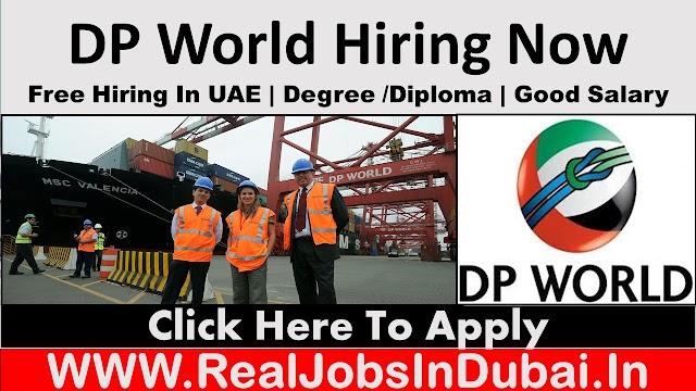 DP World Careers Jobs Vacancies Opportunities In Dubai- UAE