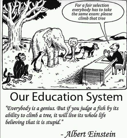 Our Education System cartoon of animals