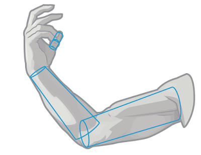 Covert the basic shapes of the arm into simple or basic forms.