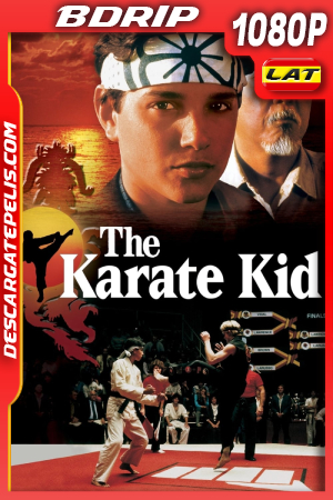Karate Kid (1984) 1080P BDRIP Latino – Ingles