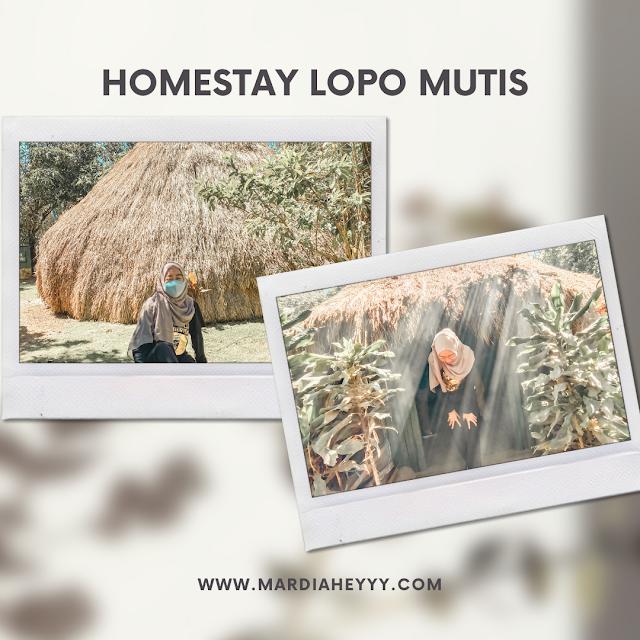 homestay-lopo-mutis