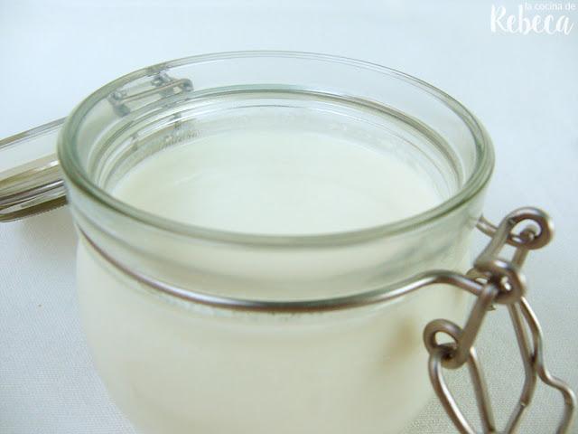 Kéfir (de leche)