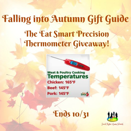The Eat Smart Precision Thermometer