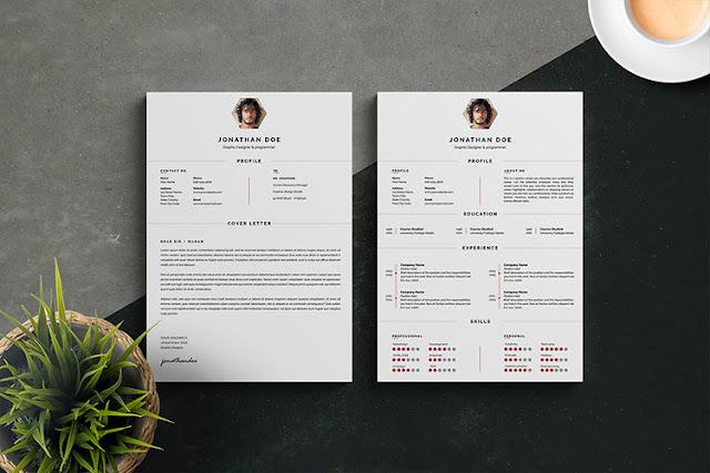 Professional Resumes / CV Templates