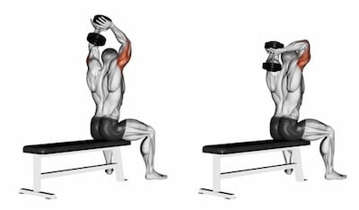 Dumbbell seated overhead tricep extension