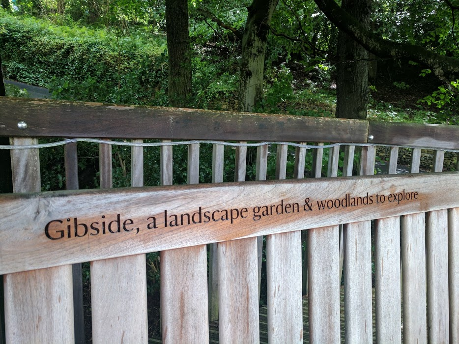 11 Woodland Walks to try in North East England this Autumn - Gibside