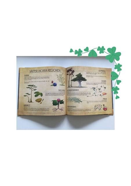 uppslag ur boken med bilder på växter från västra regionen