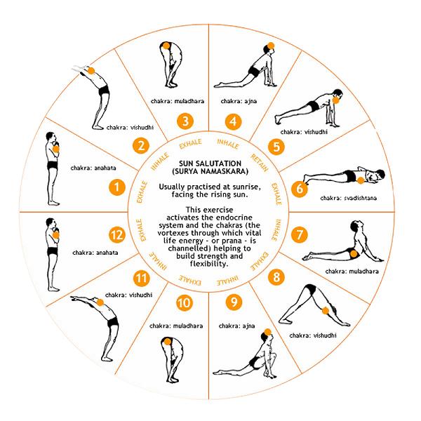 12 Steps of Surya Namaskar in Hindi