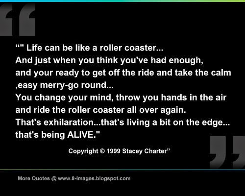 Life Can Be Like A Roller Coaster And Just When You Think Youve