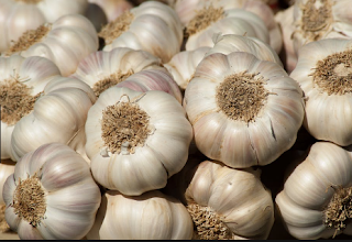 10 Amazing Benefits From Garlic For Health