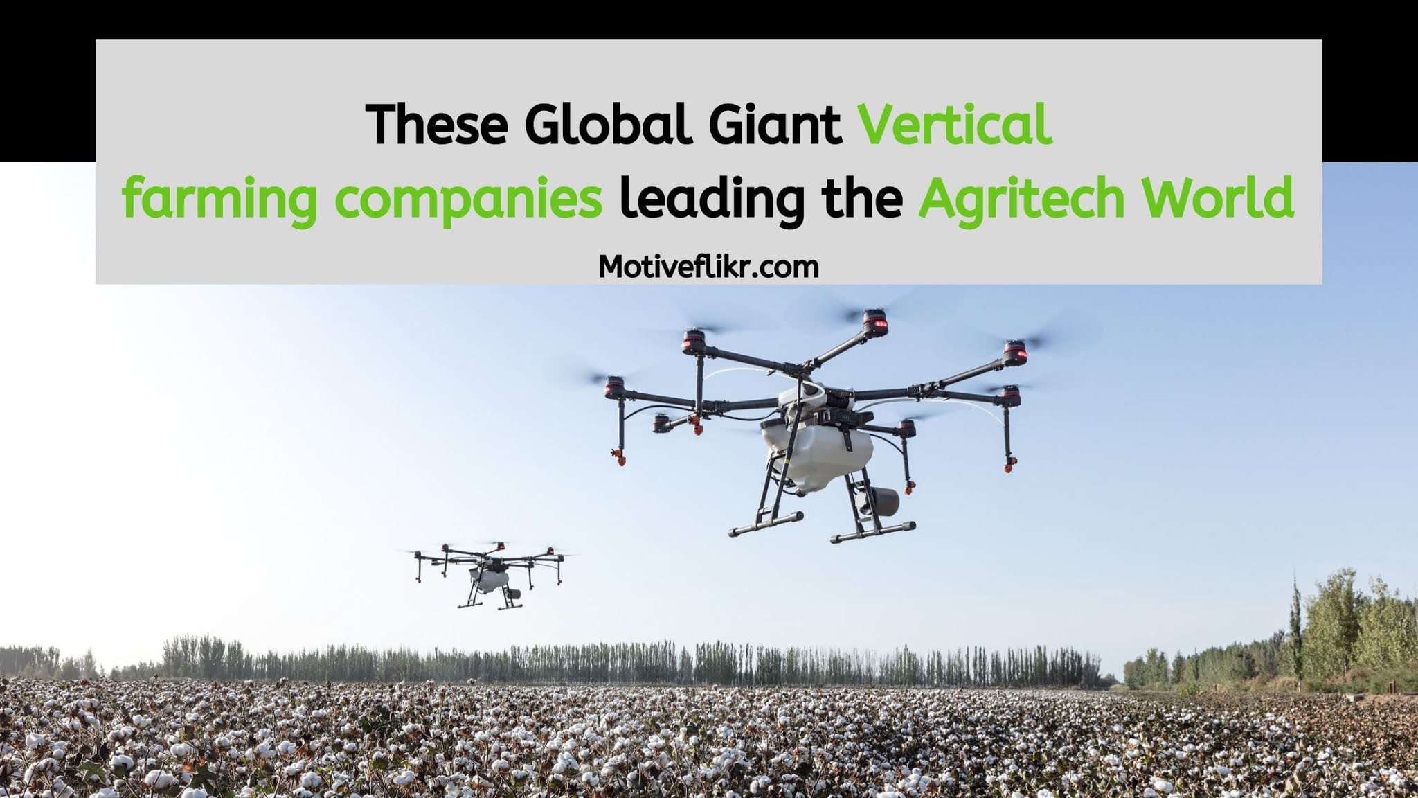 These Global Giant Vertical farming companies leading the Agritech World
