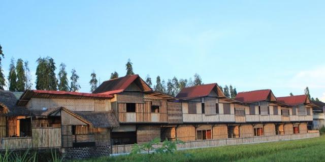Guest House Yang Menawarkan Nuansa Asri Dan Hijau Di Bantul