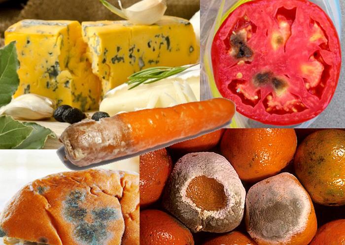 7 Makanan yang Masih Bisa Dikonsumsi Jika Berjamur, keju, Keju Cheedar, Roti, Wortel, Tomat, Peach, Jeruk, Busuk, busuk, moldy, jamur, mold fungus, cheese, tomato, orange, carrot, accidentally ate mold, black mold on food, buah tomat untuk keperkasaan, budidaya tomat, cara membuat roti berjamur, cara mengatasi agar makanan tidak berjamur, cara mengobati keracunan roti berjamur, cara menyimpan buah agar tidak cepat busuk, cara menyimpan buah jeruk agar tetap segar, cara menyimpan buah tanpa kulkas, ciri ciri jamur pada roti, ciri ciri keju kadaluarsa, ciri ciri keju rusak, ciri keju basi, ciri-ciri roti yang sudah berjamur, contoh efek makan roti berjamur, contoh makanan yang berjamur, dodol berjamur, Permentasi keju, food mold facts, how fast does mold grow on food, inhaling mold spores from food, jenis jamur pada roti kadaluarsa, kandungan tomat, keju bahasa inggris, keju cheddar berjamur, keju kraft, keju mozarella berjamur, keju parut, keracunan roti berjamur, khasiat tomat untuk pria, kurma berjamur, macam-macam keju, makanan berjamur, makanan berjamur belum tentu harus dibuang, manfaat buah tomat untuk kesehatan, manfaat keju, manfaat makan tomat sebelum tidur, merk keju, mold on food, mold on strawberries, nama jamur pada roti basi, pengertian keju, pengertian tomat, penyebab roti berjamur, roti berjamur boleh dimakan, tahu berjamur, terlanjur makan roti berjamur, tomat ceri, what causes mold on food