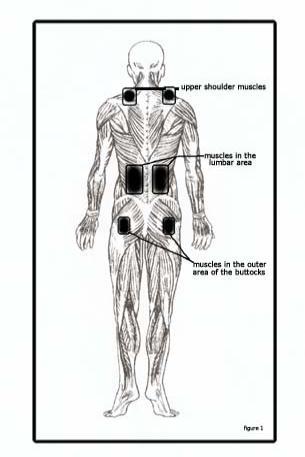 Upekha: Healing Back Pain