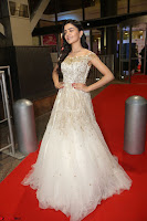 Rukshar Mir designer Anarkali Gown at 64th Jio Filmfare Awards South  2017 ~  Exclusive 112.JPG