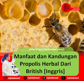 Manfaat dan Kandungan Propolis Herbal Dari British [Inggris]
