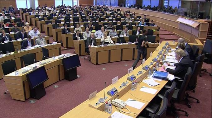 Eurodiputados plantean la situación de los presos políticos saharauis en las cárceles marroquíes ante el subcomité de DD.HH del Parlamento Europeo