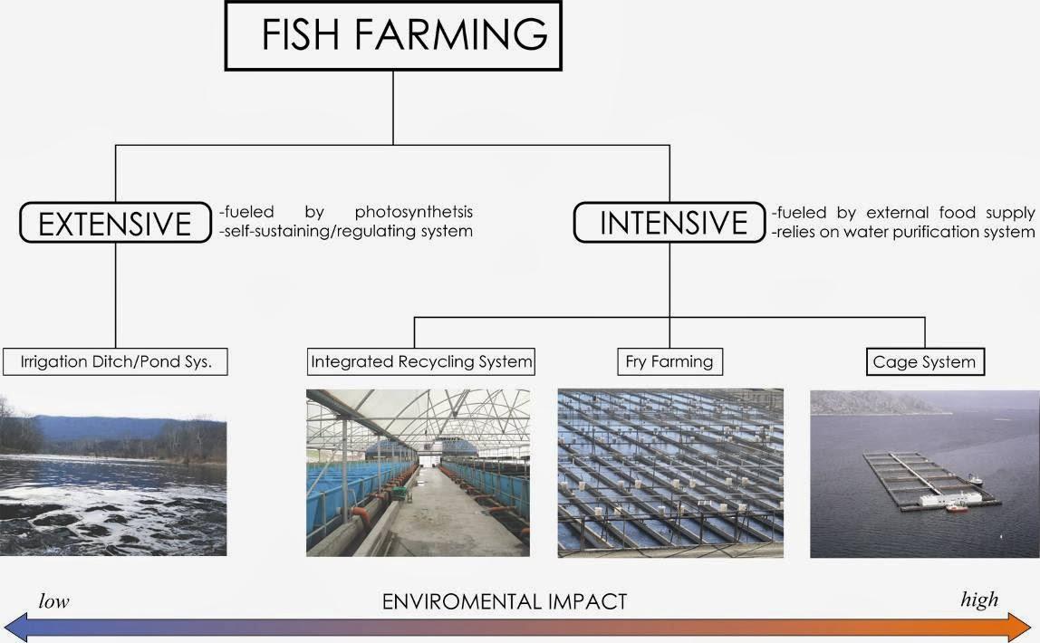 Biotechnology: Fish Farming