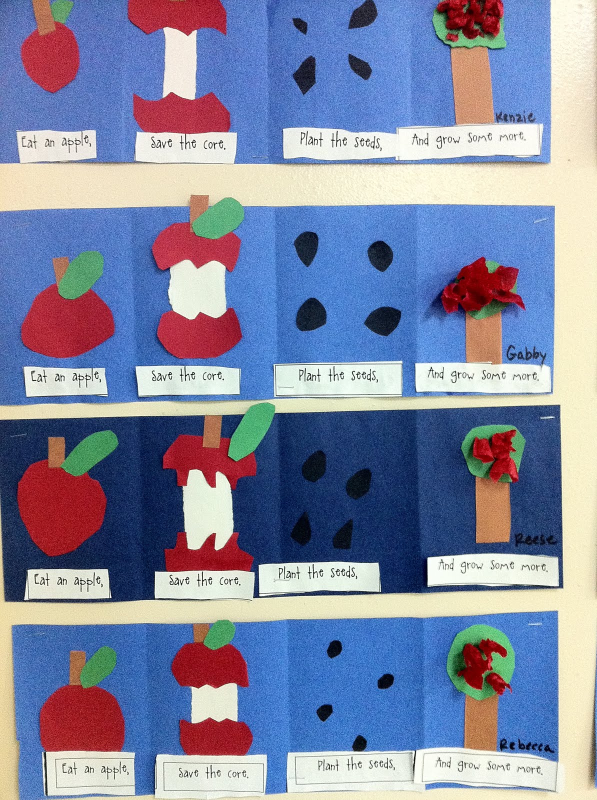 First Grade Facts Apples